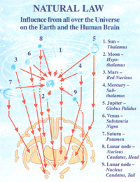 Natural Law - Influence from all over the Universe on the Earth and the Human Brain